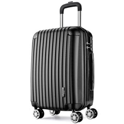 Ruled Luggage Case