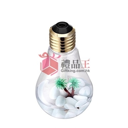 Colorful Light Bulb Humidifier